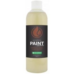 IGL Ecoshine Paint 500ml